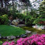 Rabaty kwiatowe - jak założyć i pielęgnować