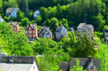 Coraz mniej zieleni w naszych miastach