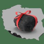 Jak używać kotłów rentowych zasilanych ekogroszkiem?