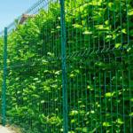 Producent ogrodzenia