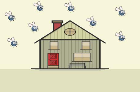 Na czym polega odpluskwianie mieszkań?